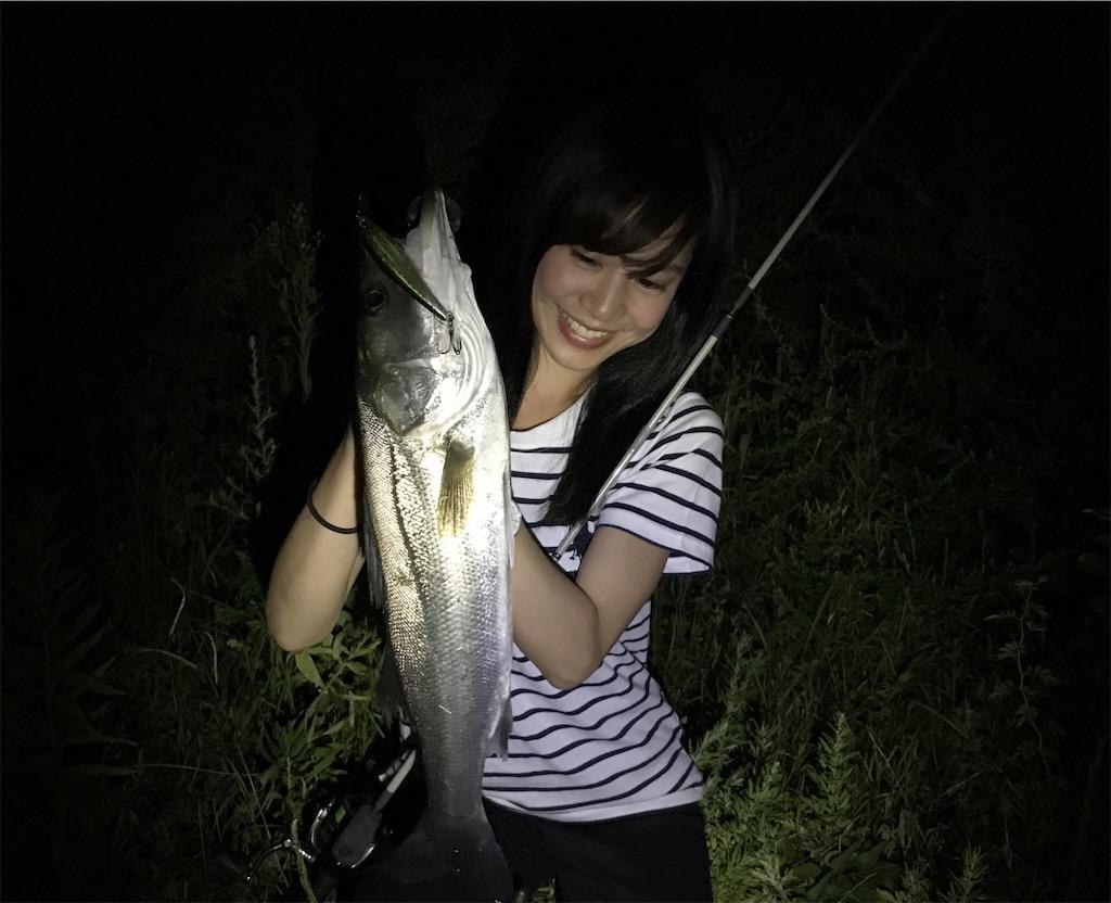 f:id:fukuiyuta:20170908173537j:plain