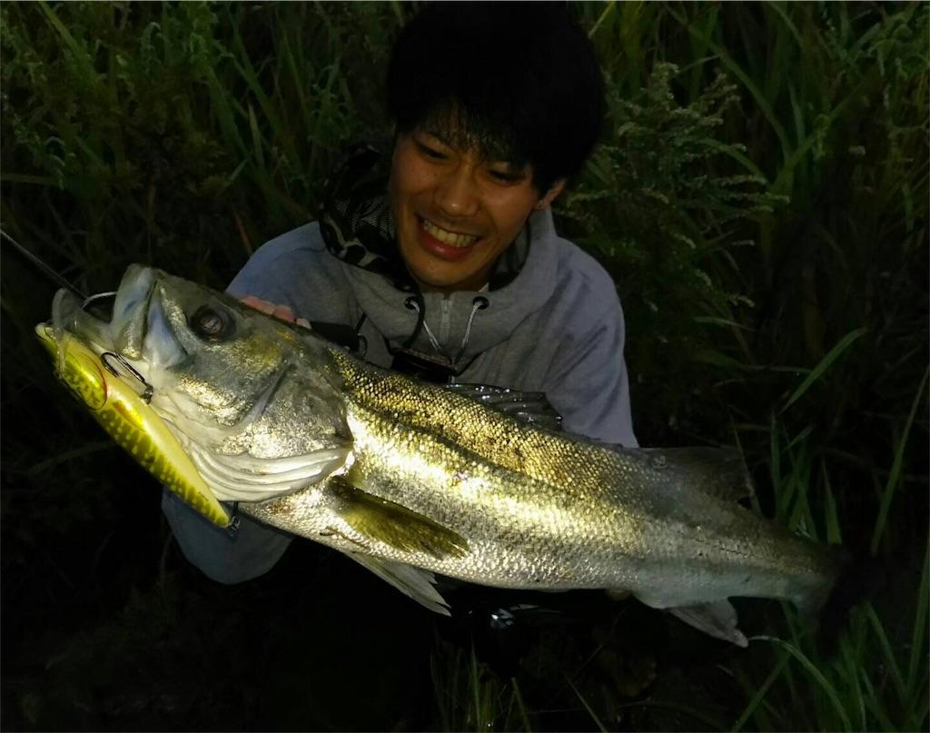 f:id:fukuiyuta:20170925105716j:image