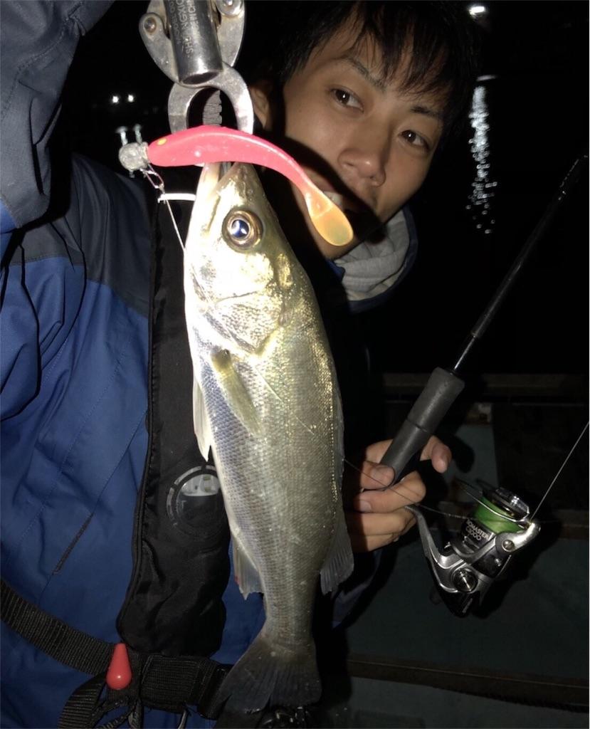 f:id:fukuiyuta:20171018113645j:image