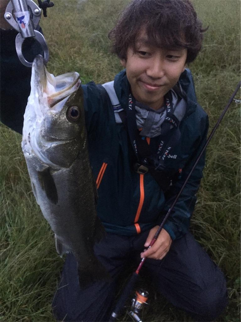 f:id:fukuiyuta:20171023124137j:plain
