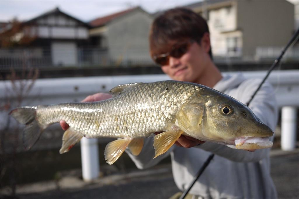 f:id:fukuiyuta:20171201111043j:image