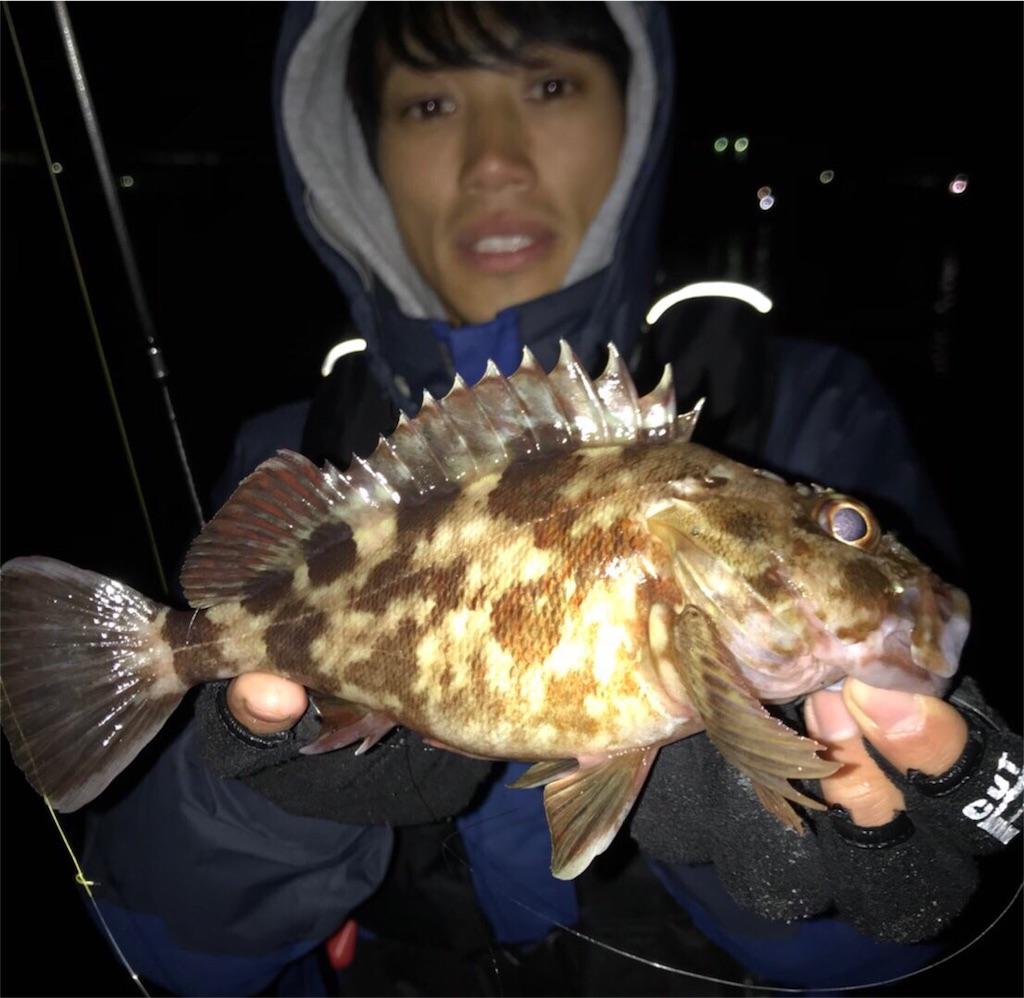 f:id:fukuiyuta:20171205203009j:plain