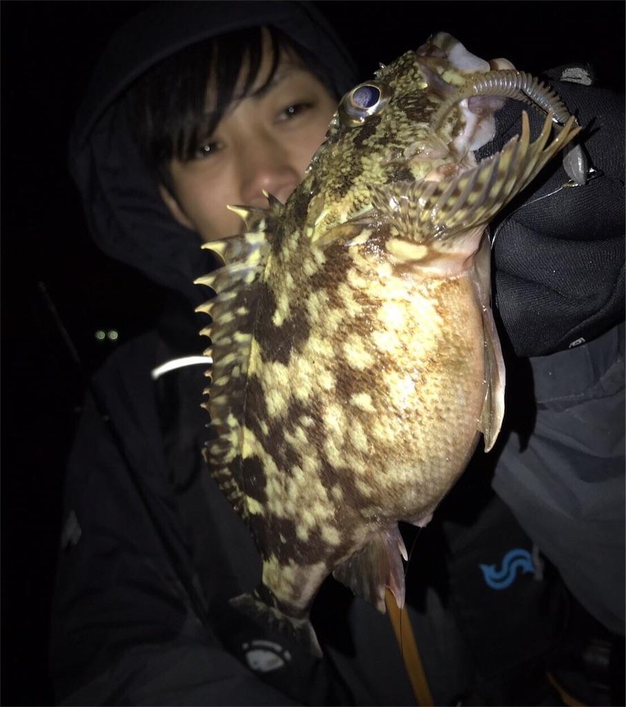 f:id:fukuiyuta:20180125123307j:image