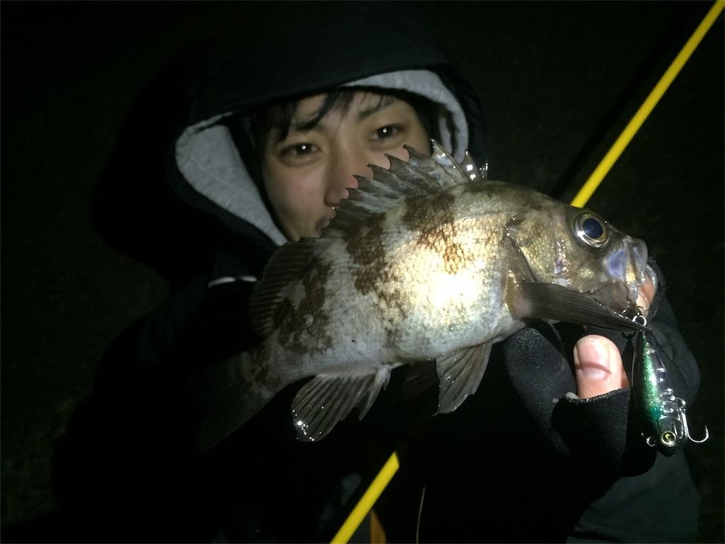f:id:fukuiyuta:20180224001957j:plain