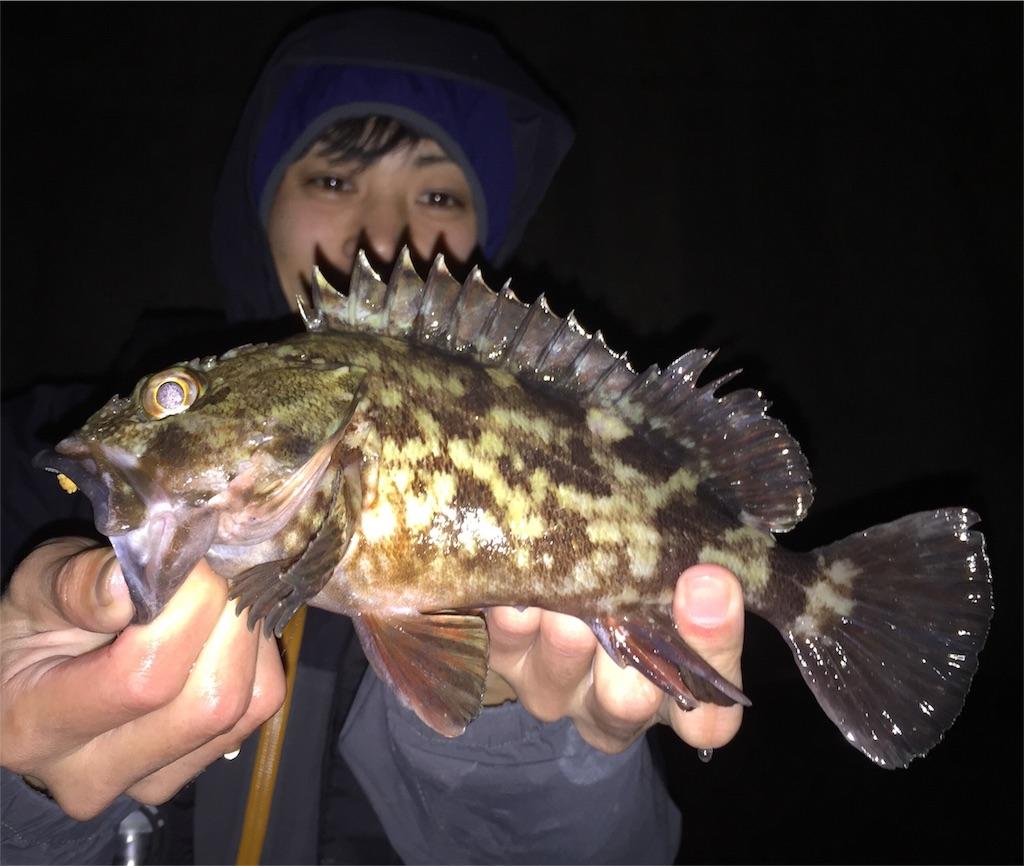 f:id:fukuiyuta:20180224123540j:image