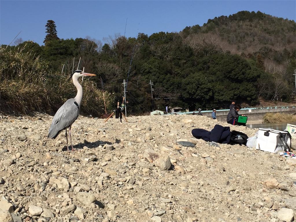 f:id:fukuiyuta:20180314134201j:image