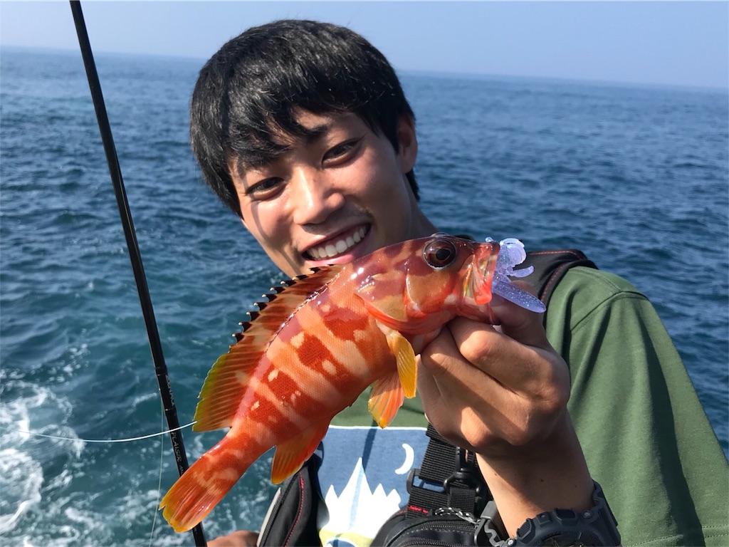f:id:fukuiyuta:20180729072207j:image