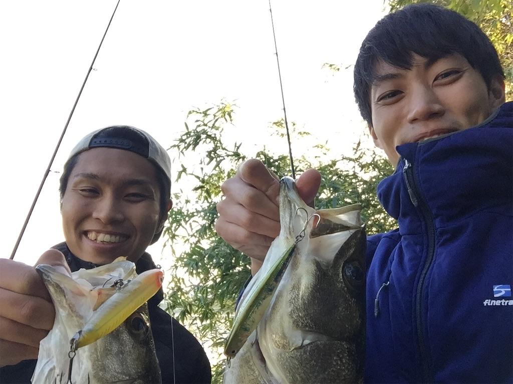 f:id:fukuiyuta:20190115234637j:image