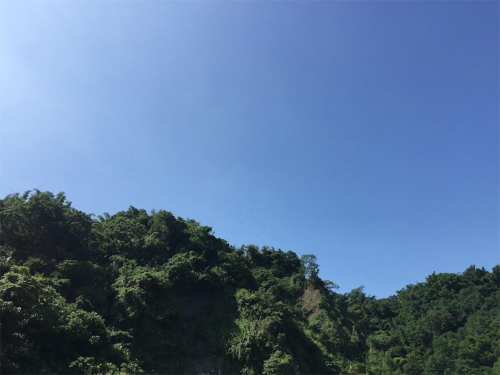 f:id:fukuiyuta:20190220225620j:plain