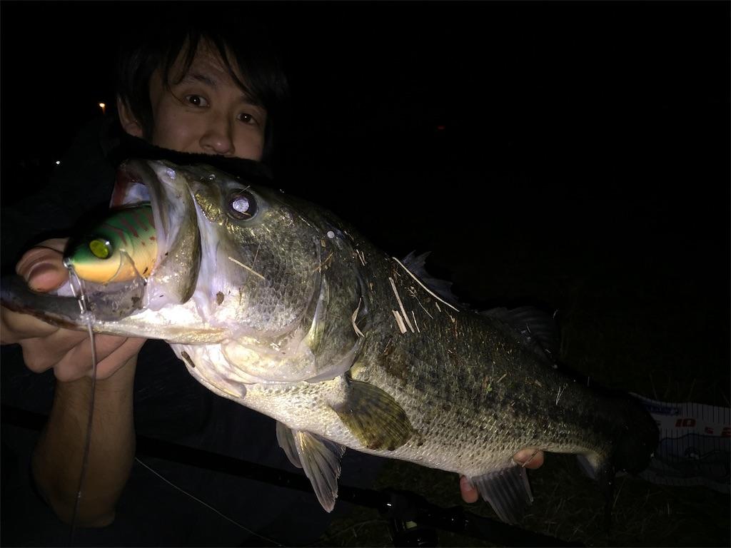 f:id:fukuiyuta:20190306190108j:image