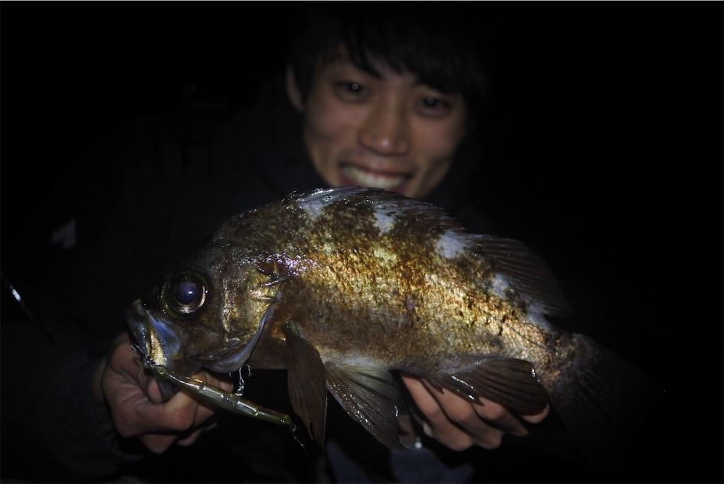 f:id:fukuiyuta:20190327194839j:image