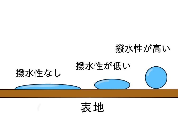 f:id:fukujipaisen:20210106152540j:image