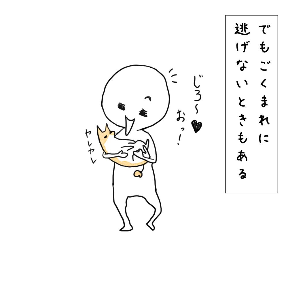 f:id:fukujiro0714:20200320231111j:plain