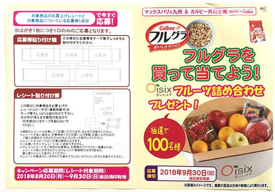 f:id:fukumiminet:20180910145213j:plain