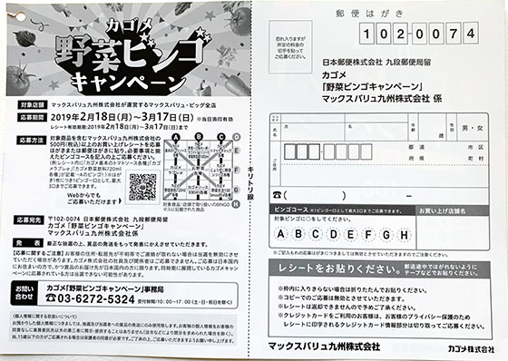 f:id:fukumiminet:20190220084902j:plain
