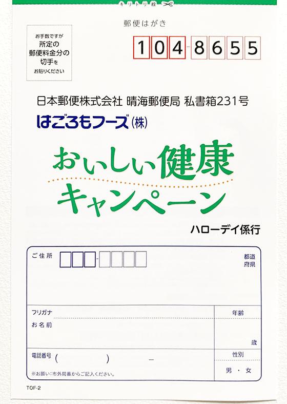 f:id:fukumiminet:20190618094014j:plain