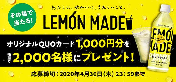 f:id:fukumiminet:20200226130354j:plain