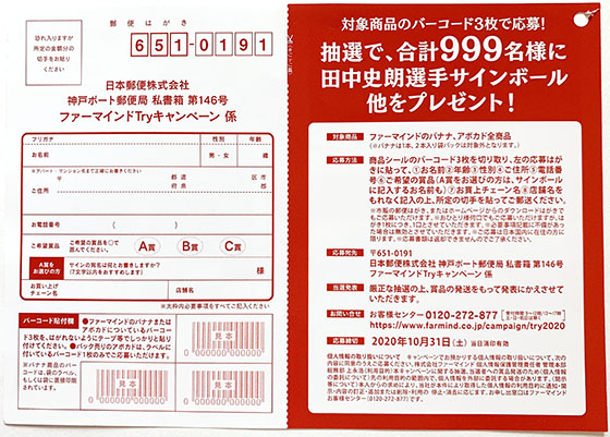 f:id:fukumiminet:20201023141602j:plain