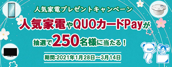 f:id:fukumiminet:20210131100556j:plain