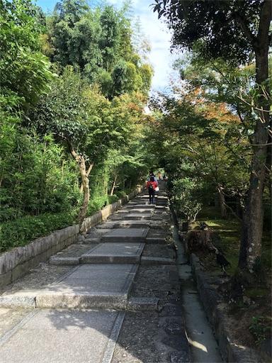 f:id:fukunohitoritabi:20161014171812j:image