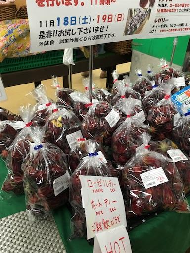 f:id:fukunohitoritabi:20171129230136j:image