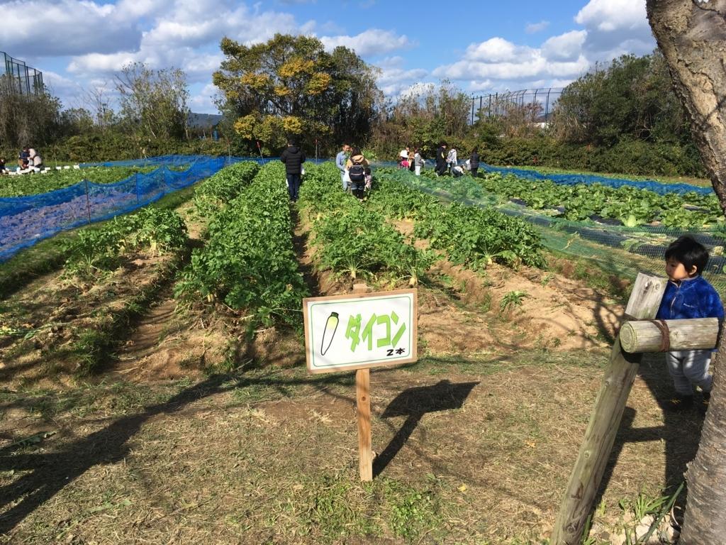 f:id:fukuoka-shigaika:20171129150844j:plain