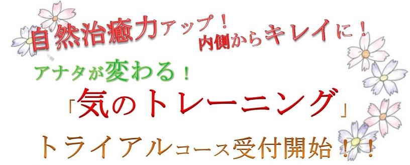 f:id:fukuokadokan:20200610161015j:plain