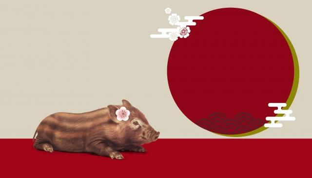 f:id:fukuroko-ji:20190101182158j:plain