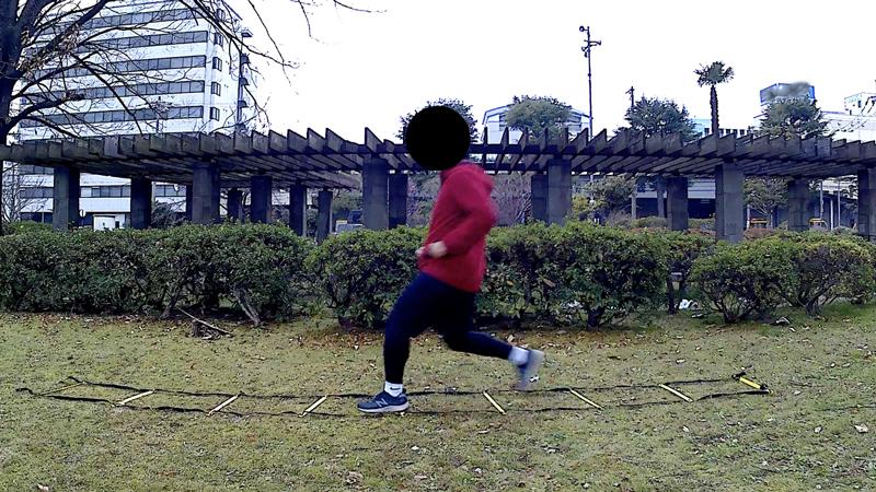 f:id:fukuroko-ji:20190211225409j:plain