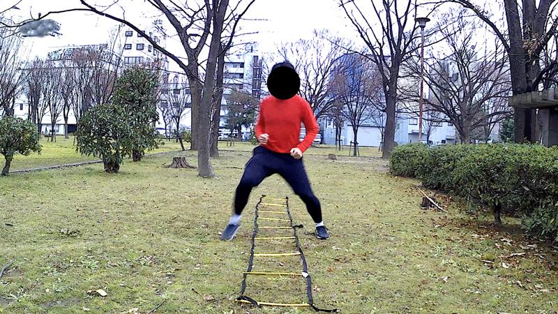 f:id:fukuroko-ji:20190211225440j:plain