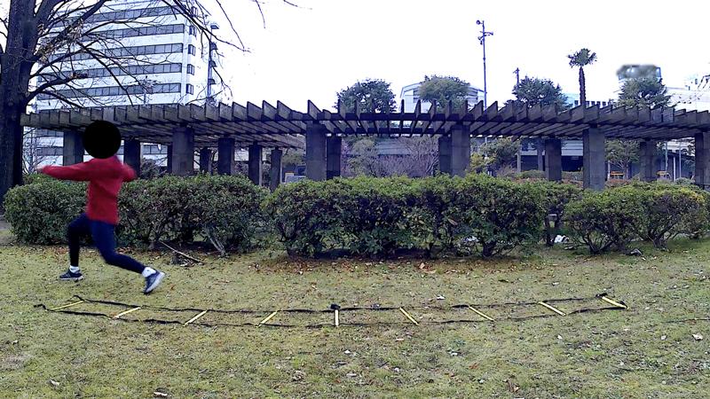f:id:fukuroko-ji:20190211225541j:plain