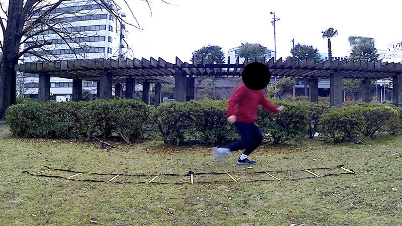 f:id:fukuroko-ji:20190211225606j:plain
