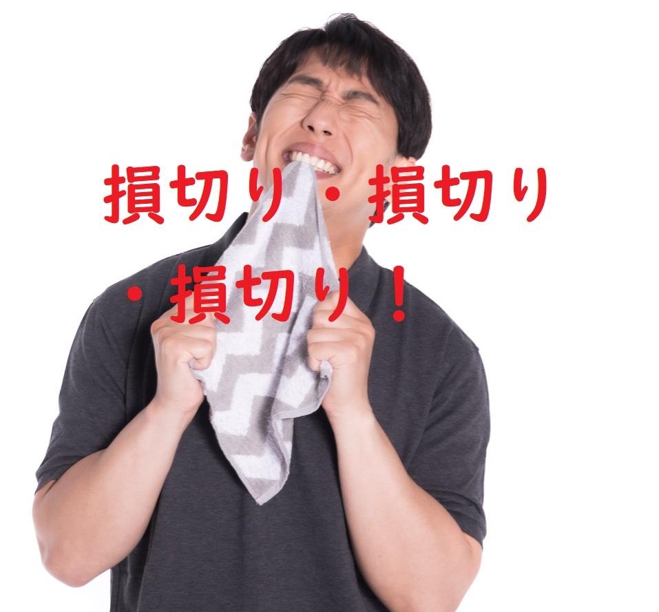 f:id:fukuroseikatsu:20201227080400j:plain