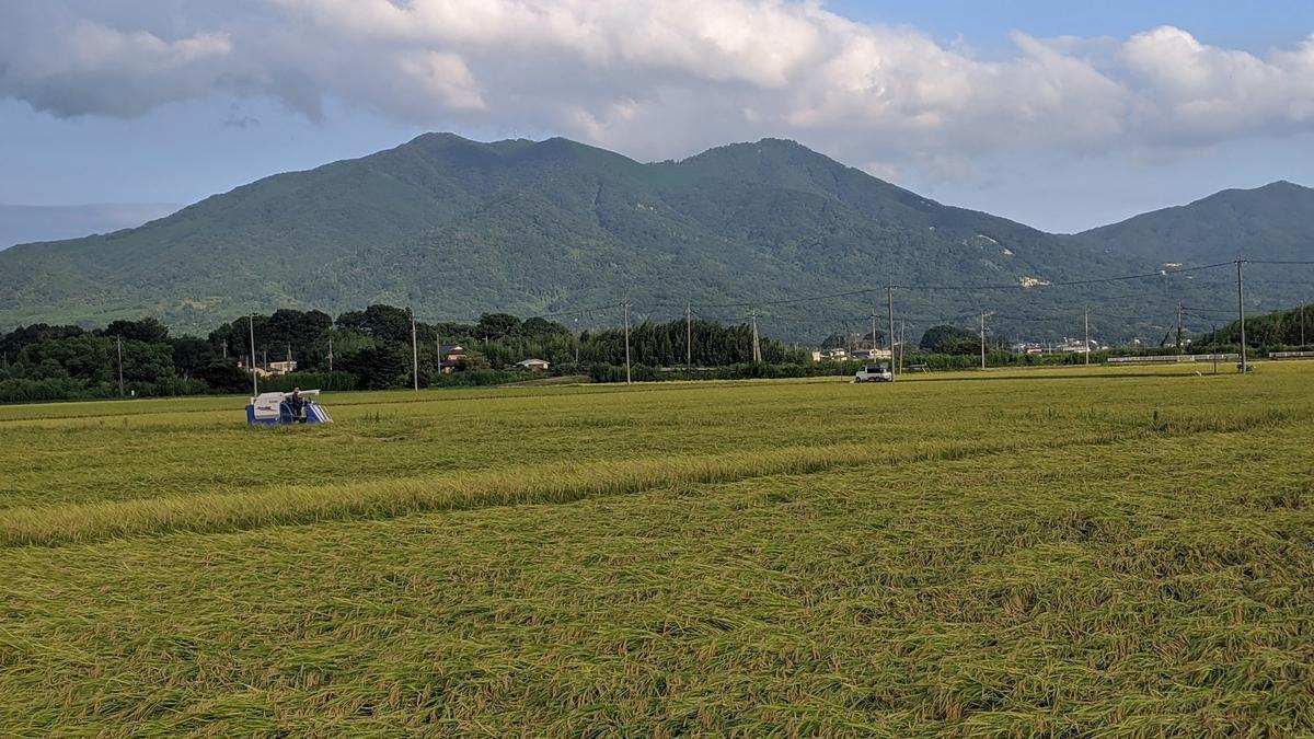 f:id:fukushima-nobuyuki:20210525150518j:plain