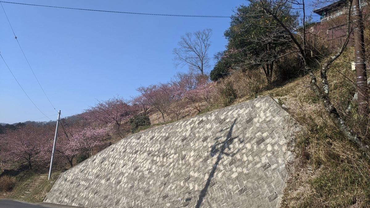 f:id:fukushima-nobuyuki:20210602025412j:plain