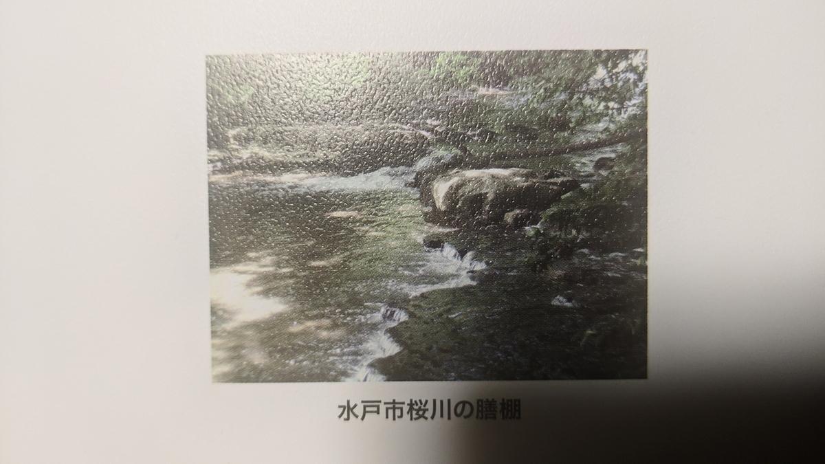 f:id:fukushima-nobuyuki:20210602030135j:plain