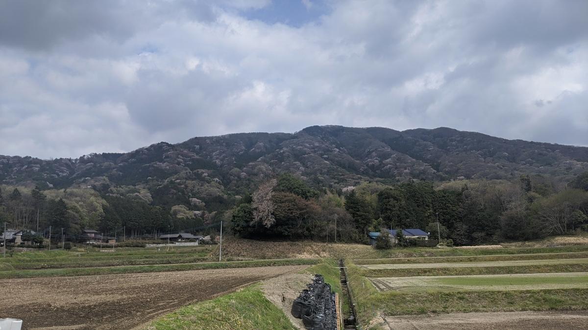 f:id:fukushima-nobuyuki:20210602204827j:plain