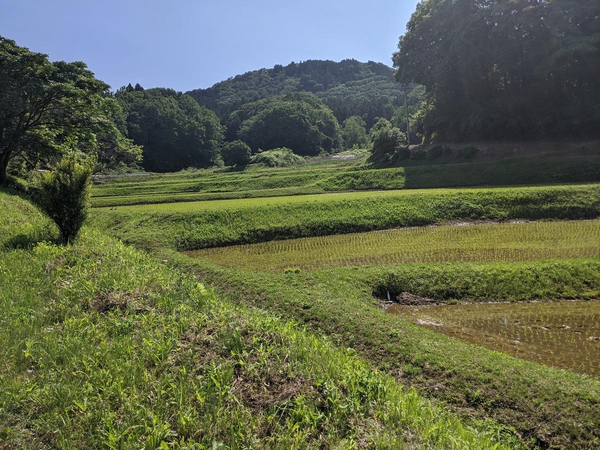 f:id:fukushima-nobuyuki:20210905004725j:plain