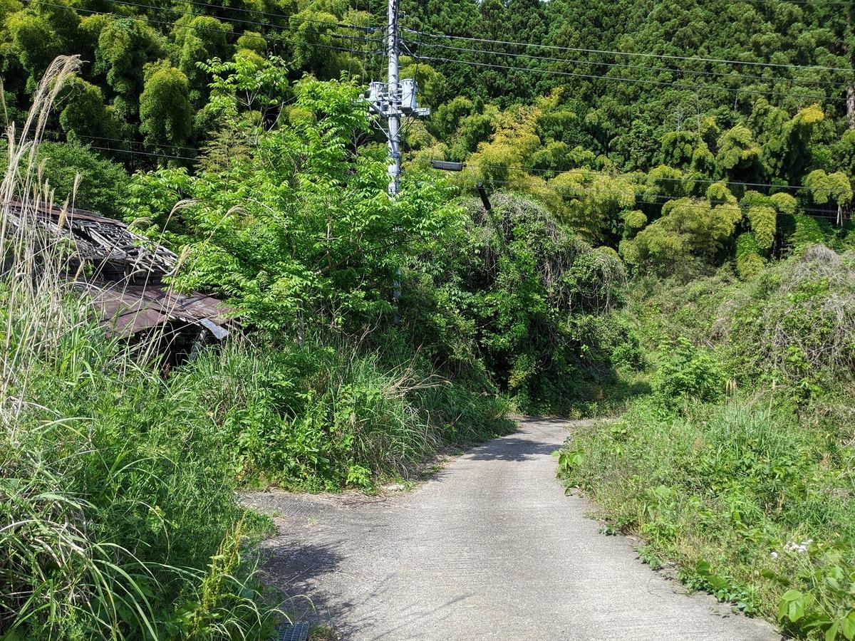f:id:fukushima-nobuyuki:20210905004756j:plain