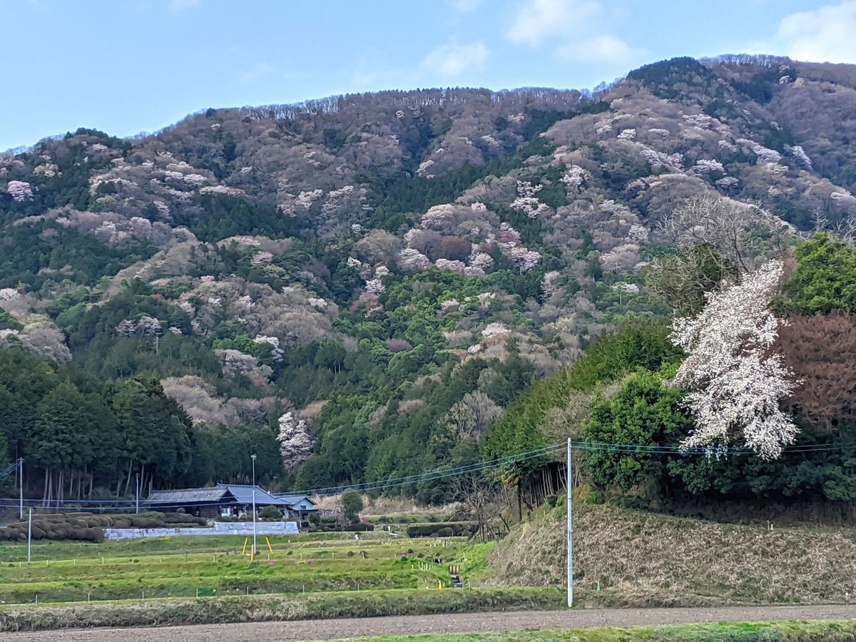 f:id:fukushima-nobuyuki:20210909013609j:plain