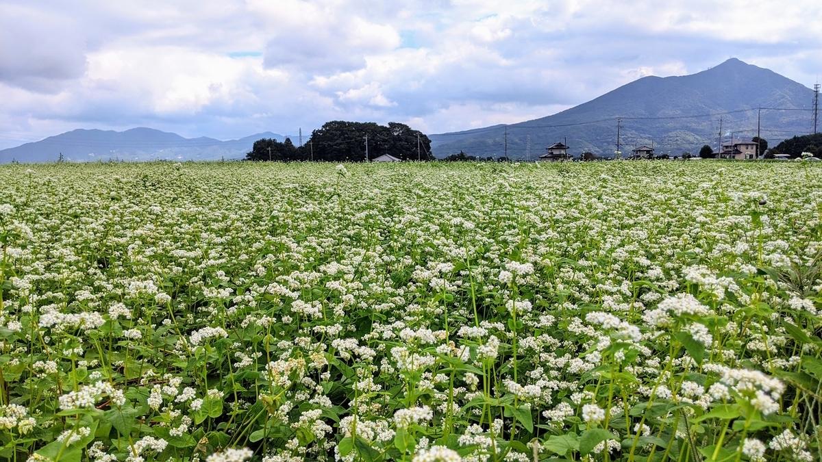 f:id:fukushima-nobuyuki:20210928024631j:plain
