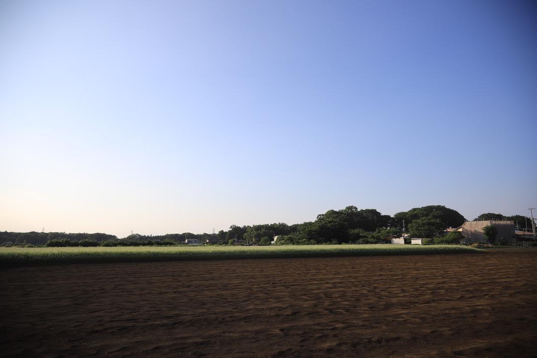 f:id:fukusuke-tz:20200628170439j:plain