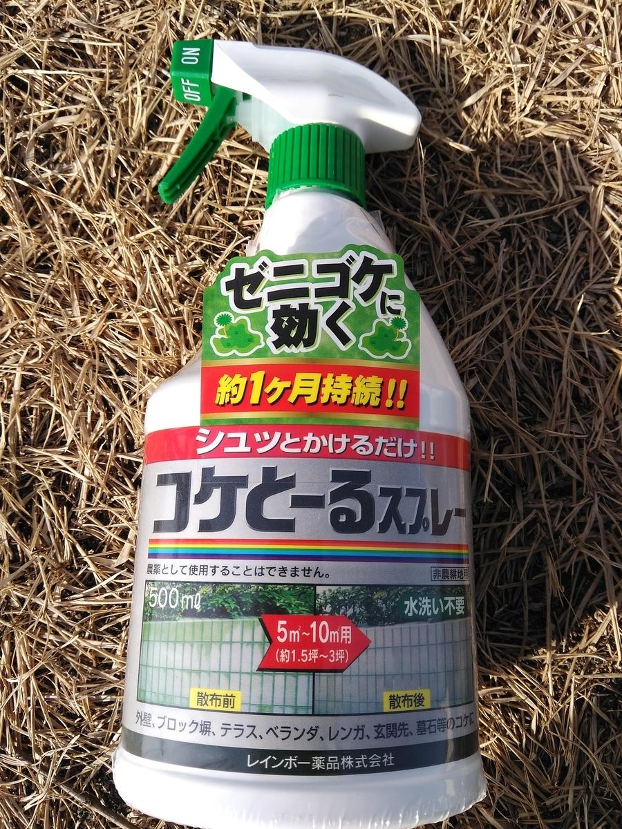 f:id:fukusunosaifu:20200228144045j:plain