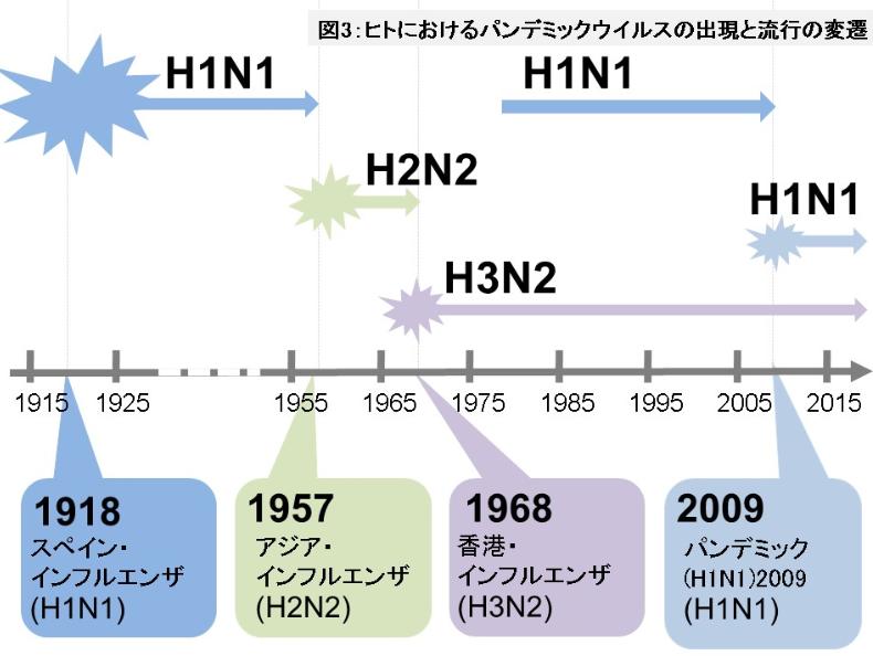 f:id:fukusunosaifu:20200920102106p:plain
