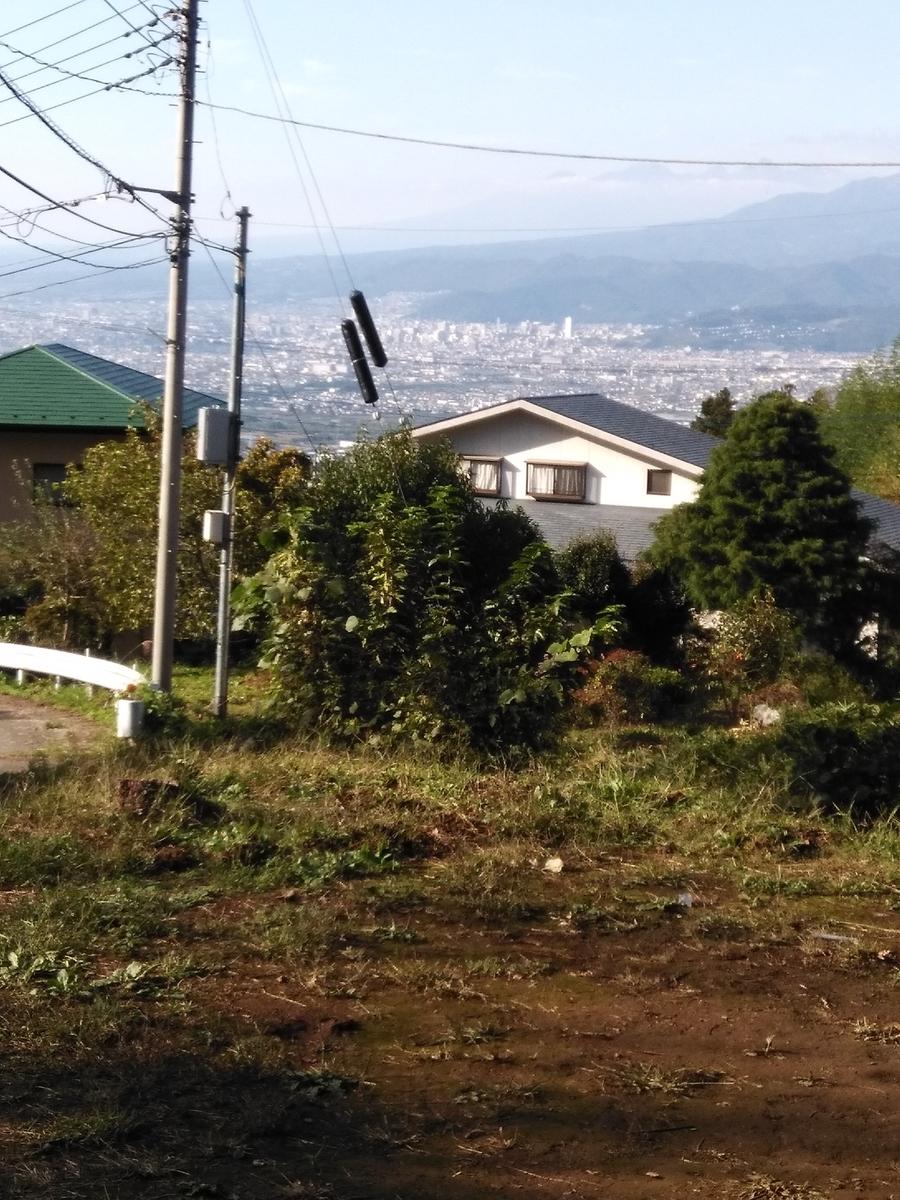 f:id:fukusunosaifu:20201023082102j:plain