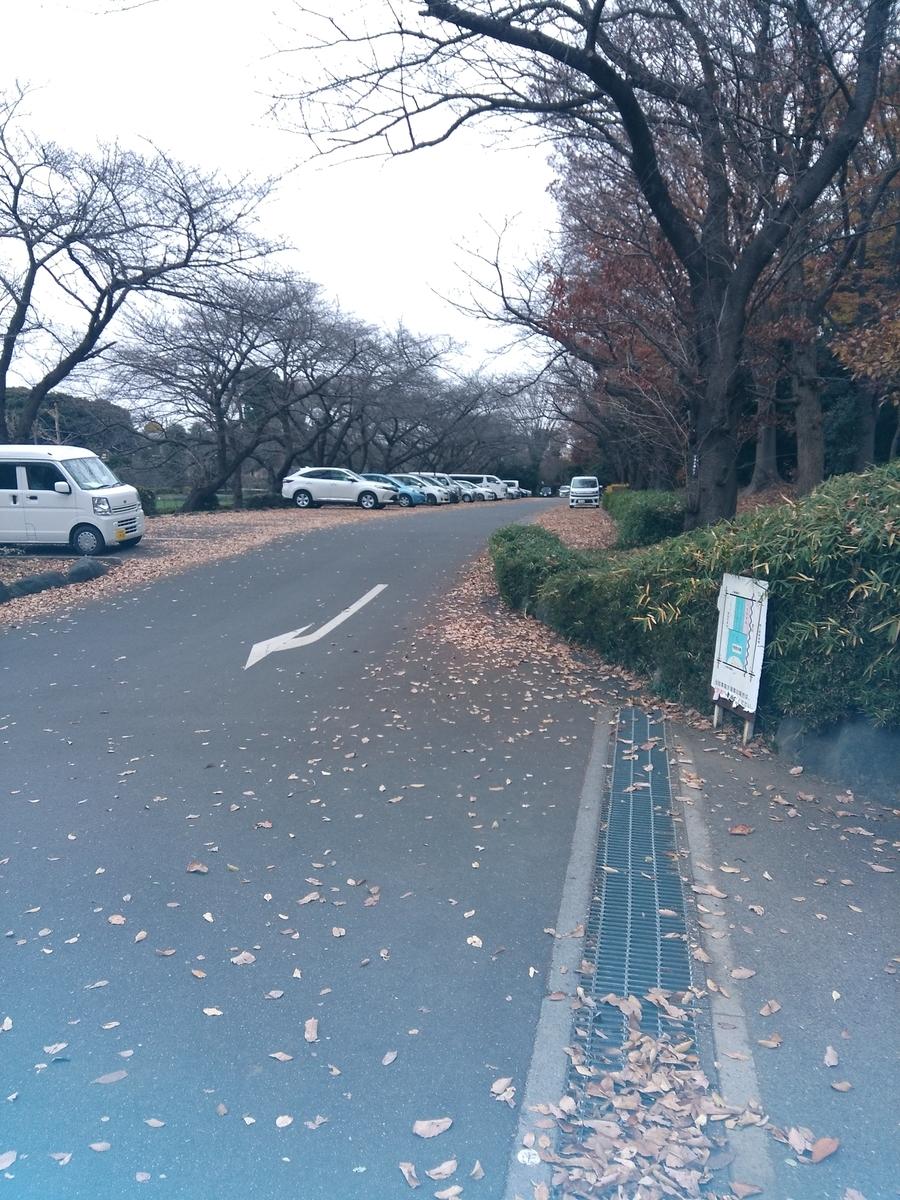 f:id:fukusunosaifu:20201214154301j:plain