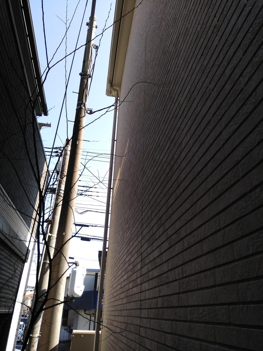 f:id:fukusunosaifu:20210214150914j:plain