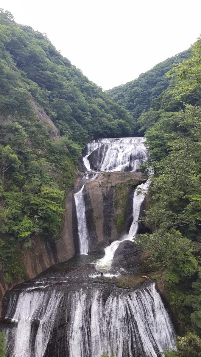 f:id:fukusunosaifu:20210610090924j:plain
