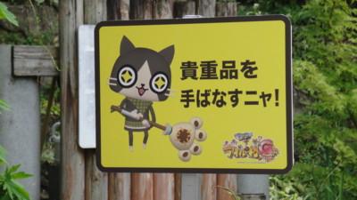 f:id:fukutake:20110818103335j:image:w400