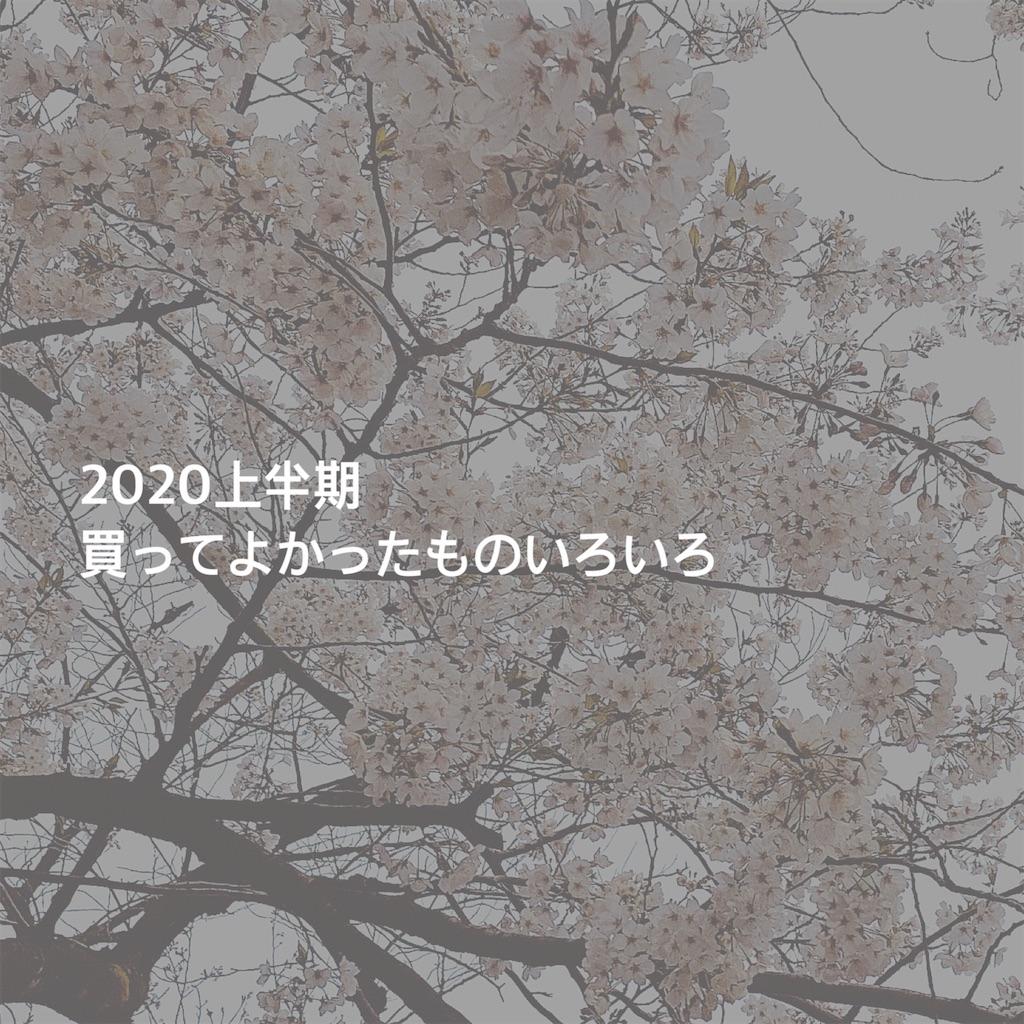 f:id:fulfulfulugi:20200616135909j:image